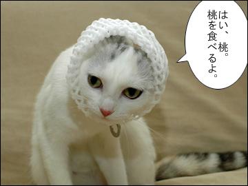 桃の試練-6コマ