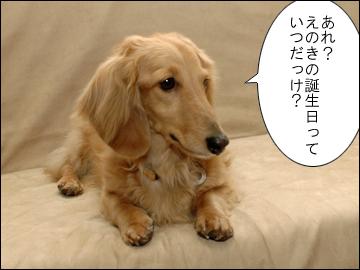 えのきちゃんの誕生日-2コマ