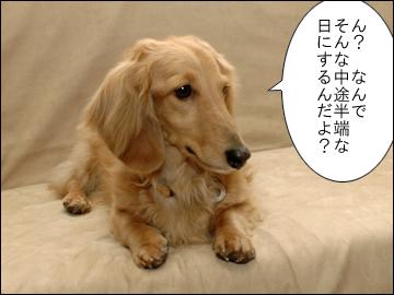 えのきちゃんの誕生日-5コマ
