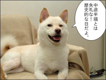 えのきちゃんの誕生日-6コマ