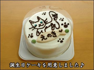 えのきちゃんの誕生日当日-2コマ