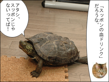 和風なジュース-7コマ