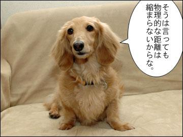羽田 & 成田-5コマ