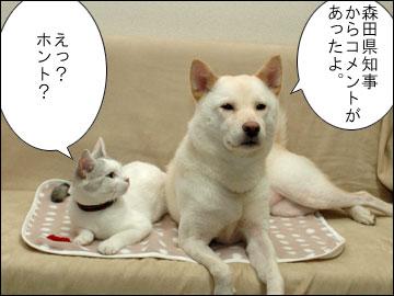 森田県知事のコメント-1コマ