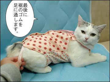 えのきの術後服-5コマ