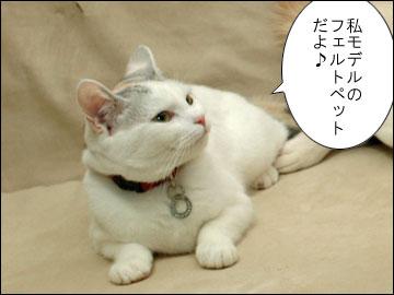えのきちゃんからの残念賞-2コマ