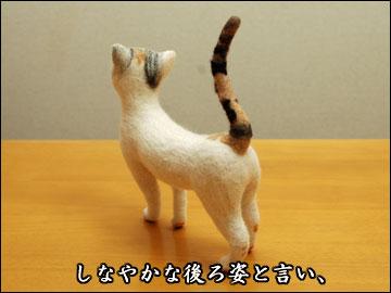 えのきちゃんからの残念賞-5コマ