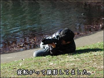 「Wan」取材秘話-5コマ