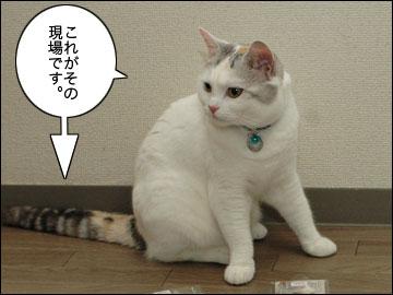 発見!たまのたま袋-3コマ