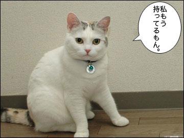iPadが日本発売!-2コマ