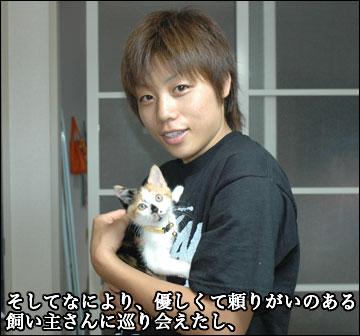 子猫さんの新しい家族-5コマ