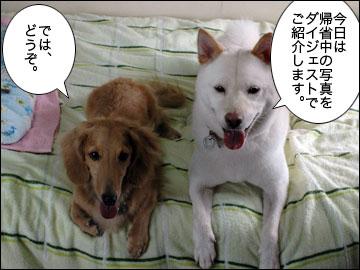 盆帰省ダイジェスト2010-1コマ