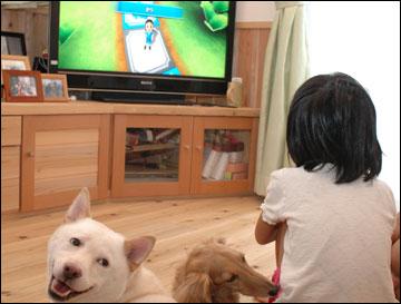 盆帰省ダイジェスト2010-8コマ