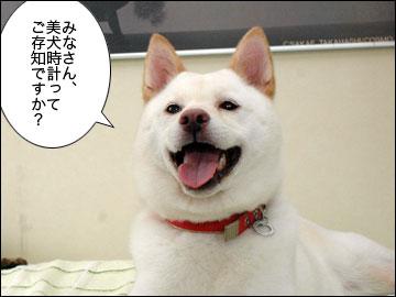 美犬時計-1コマ