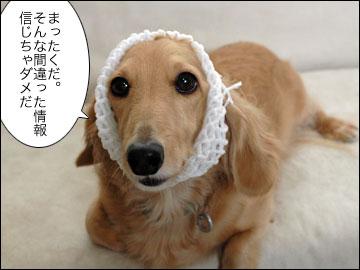 日本で一番暑い夏-3コマ