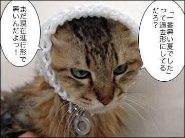 日本で一番暑い夏-5コマ