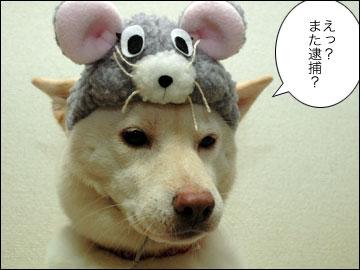 田代 まさしさん-2コマ