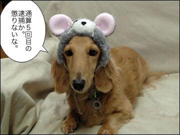 田代 まさしさん-3コマ