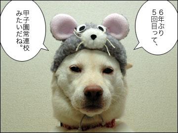 田代 まさしさん-5コマ