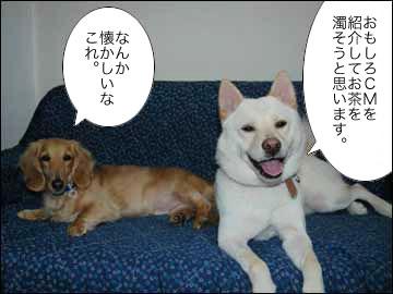 東京ガスストーリー-2コマ