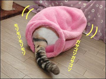 ネコ兄さんのプレゼント-5コマ
