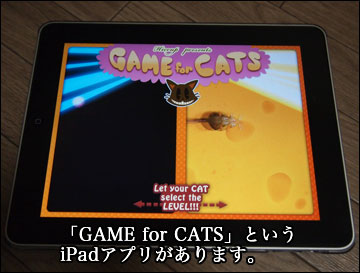 GAME for CATS-1コマ