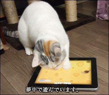 GAME for CATS-4コマ