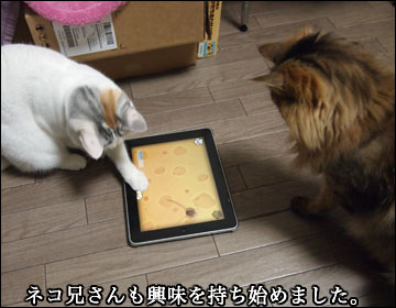 GAME for CATS-6コマ