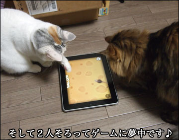 GAME for CATS-7コマ