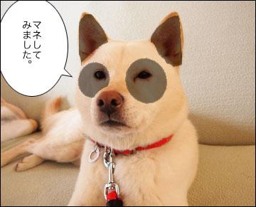 パンダが上野にやってきた!-4コマ