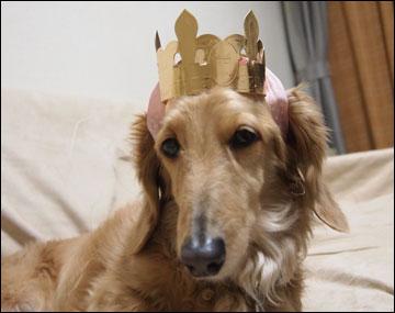 王冠-2コマ