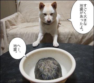 浦島まりりん-2コマ