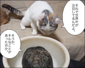 浦島まりりん-5コマ