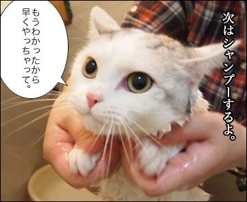 えのきの入浴シーン-5コマ