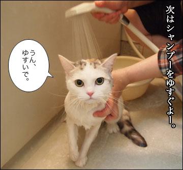 えのきの入浴シーン-7コマ