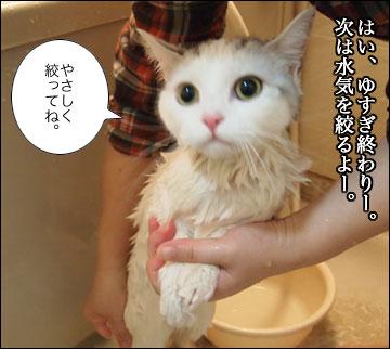 えのきの入浴シーン-9コマ