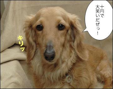 1円-5コマ