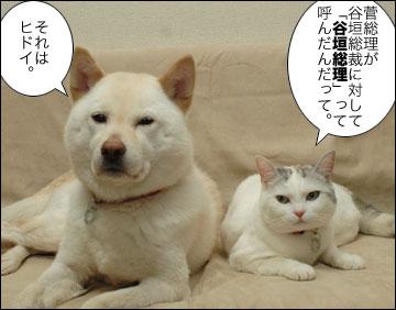 「谷垣総理」-1コマ