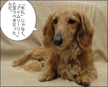 「谷垣総理」-3コマ