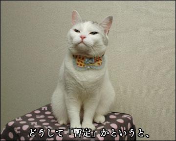 えのきちゃんの暫定誕生日-2コマ