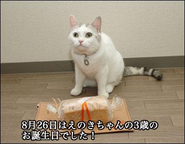 えのき3歳誕生日-1コマ