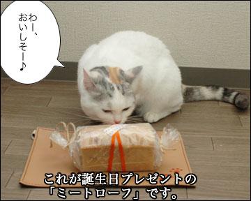 えのき3歳誕生日-2コマ