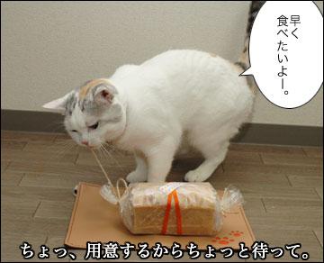 えのき3歳誕生日-3コマ