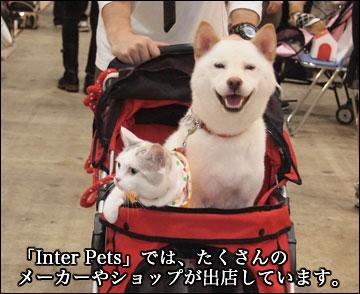 Inter Petsに行ってきた-3コマ