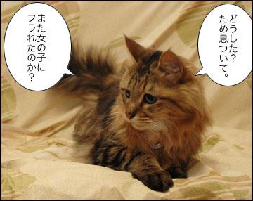 ネコ兄さんのアドバイス-2コマ