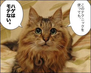ネコ兄さんのアドバイス-9コマ