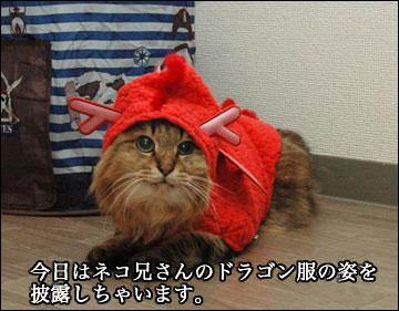 らいおん龍-1コマ