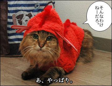 らいおん龍-4コマ