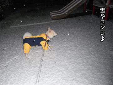 雪やコンコ-2コマ