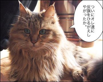 えのきちゃんの寝返り-7コマ